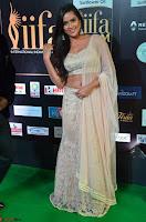 Prajna Actress in bhackless Cream Choli and transparent saree at IIFA Utsavam Awards 2017 004.JPG