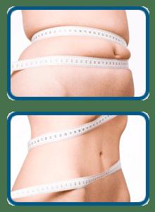 Hydroxycut weight loss plan