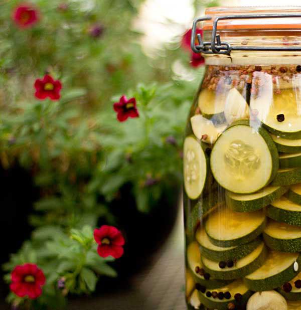 Cucumber vinegar with sichuan peppercorns