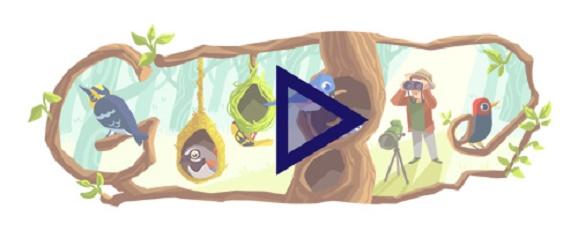 Cerita Phoebe Snetsinger di Google Doodle Hari Ini ? Siapa Phoebe Snetsinger