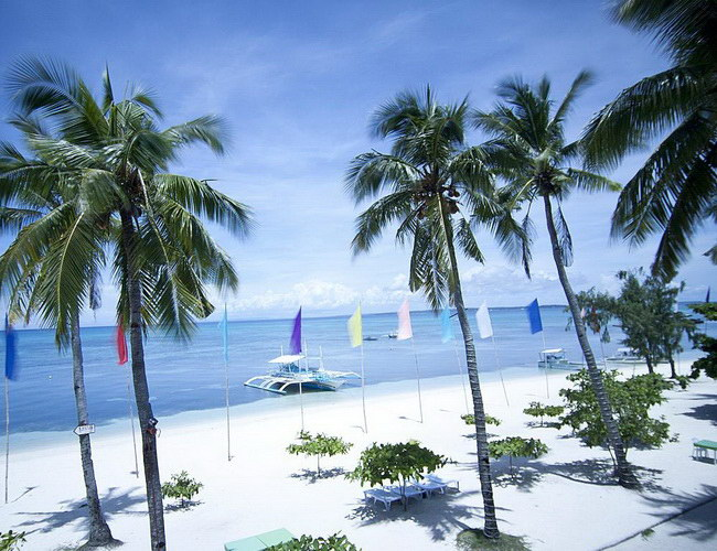 Xvvlor Malapascua Island is perfect place to watch Thresher sharks and Manta rays