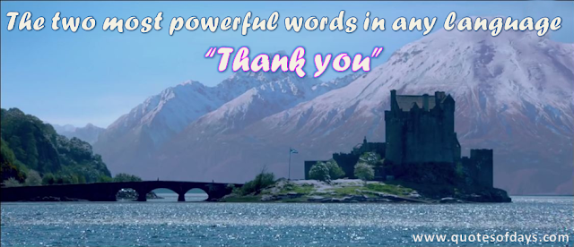 "The two most powerful words in any language                              ""Thank you"""
