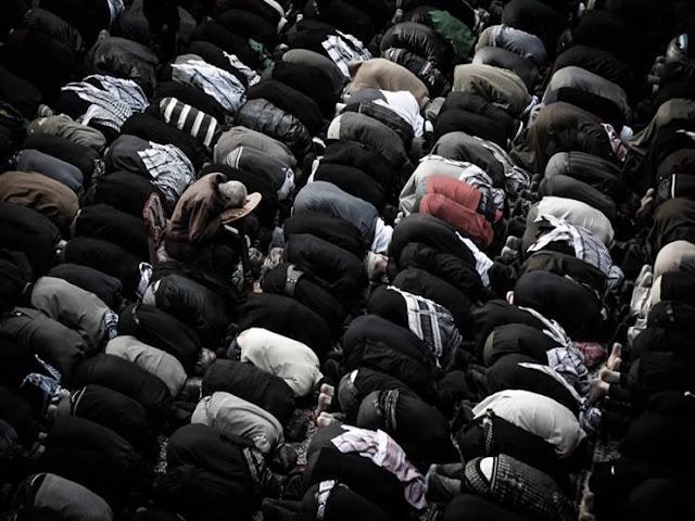 فتاوى وفوائد دينية هامة جدا في حياتنا