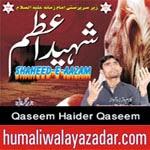 http://audionohay.blogspot.com/2014/10/qaseem-haider-qaseem-nohay-2015.html