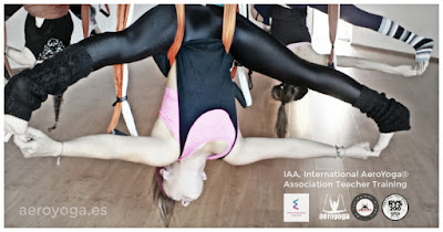 México 6 al 13 Agosto 2017, Certificación IAA International AeroYoga® Association, Teacher Training