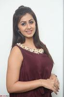 Nikki Galrani in a Brown Shining Sleeveless Gown at Nakshatram music launch ~  Exclusive 046.JPG