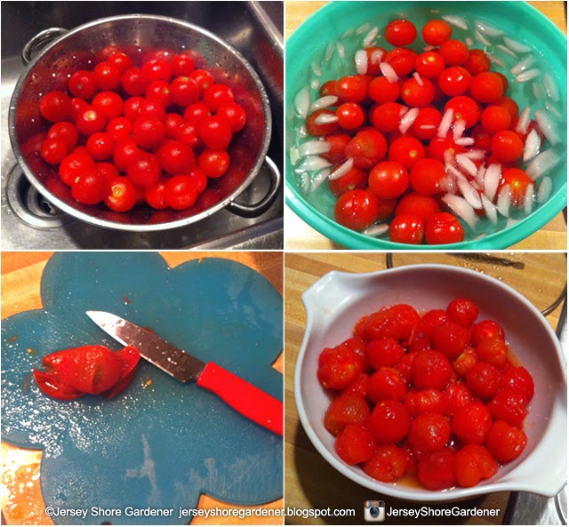 Jersey Shore Gardener How To Blanch Tomatoes For Freezing For