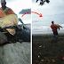 El hombre que compra tortugas y las devuelve al mar
