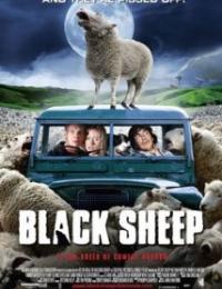 Black Sheep | Bmovies