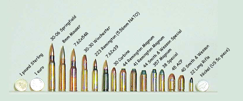 300 Blackout vs 556 \u2013 Which Caliber is better?