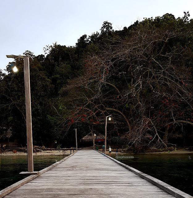 Talaip Homestay, Raja Ampat; semburat merah daun Ketapang Laut +jelajahkeluargasuwanto