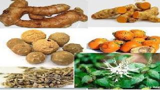 Bahan Jamu Herbal