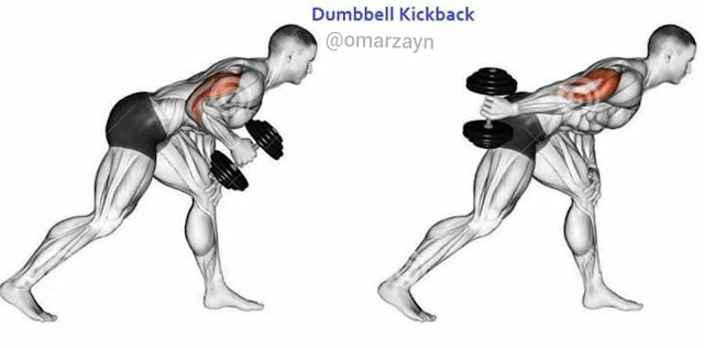 dumbbell kickback workout
