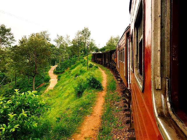 【斯里蘭卡 Badulla】坐茶園火車去買莎麗
