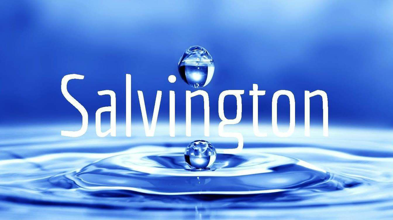 Salvington University