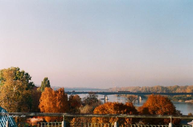 jesień, warszawa, drzewa, taras buw