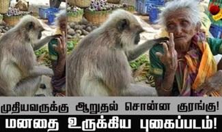 Granny with monkey photo goes viral on social media