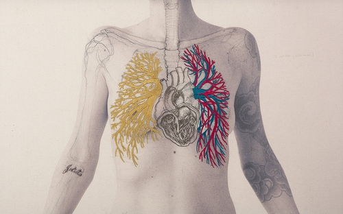 01-The Heart-Juana-Gómez-Embroidered-Anatomy-exposing-Internal-Physiology-www-designstack-co
