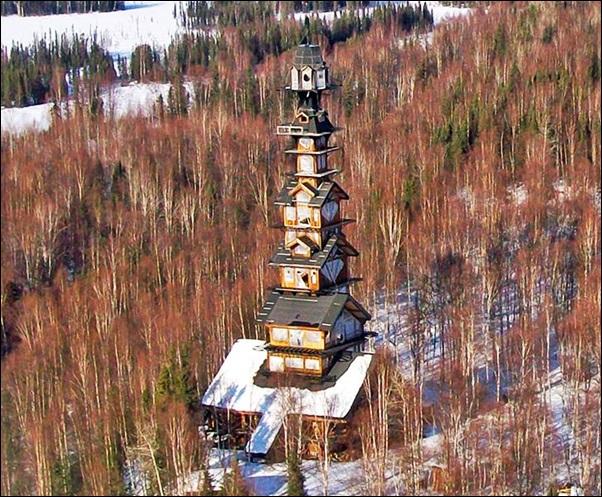 casa alta na floresta ou campo