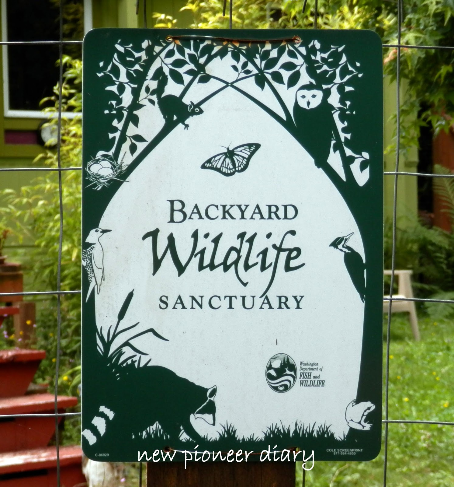 Backyard Wildlife Sanctuary