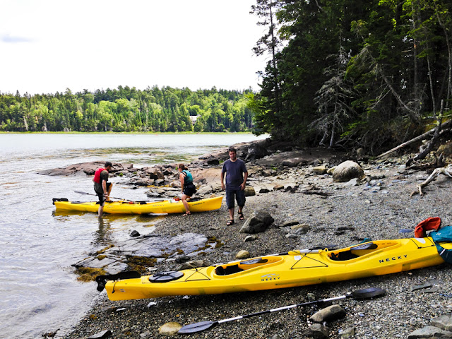 Sea Kayaking Frenchman's Bay Maine, Thomson Island