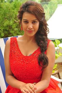 Actress Deeksha Panth Stills in Red Short Dress at Banthi Poola Janaki Press Meet  0047.jpg
