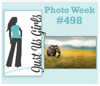 http://justusgirlschallenge.blogspot.com/2019/07/just-us-girls-498-photo-week.html
