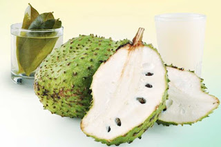 Soursop Fruit Benefits Know It