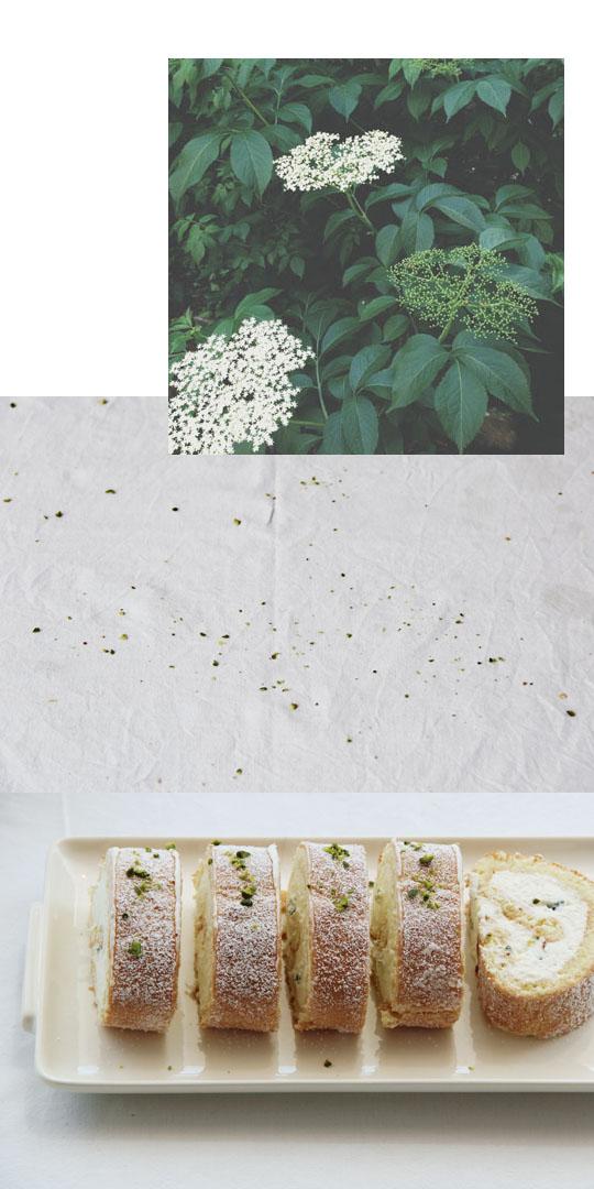 Biskuitrolle mit Holunderblütencreme