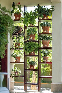 Trucos para plantar en espacios reducidos