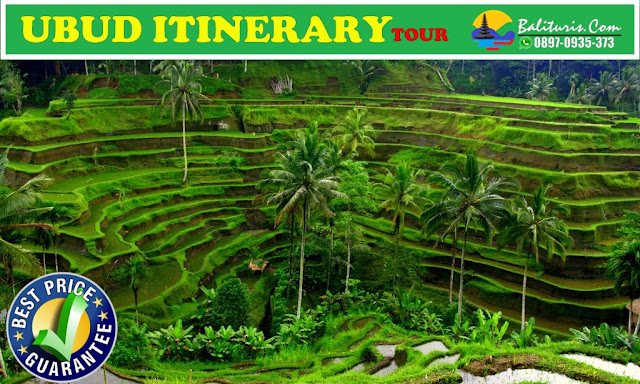 Ubud bali tour itinerary