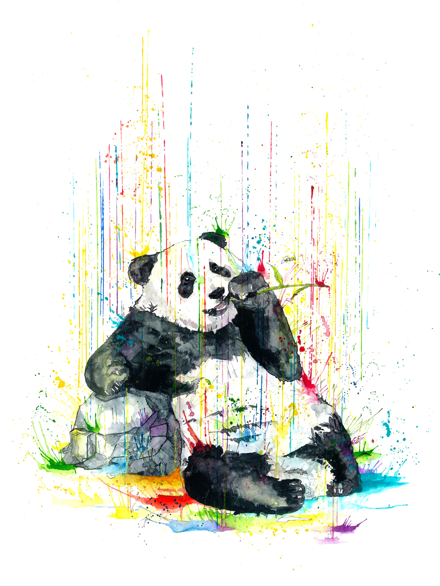 04-Panda-Philipp-Grein-Animal-Paintings-in-Splashes-of-Color-www-designstack-co