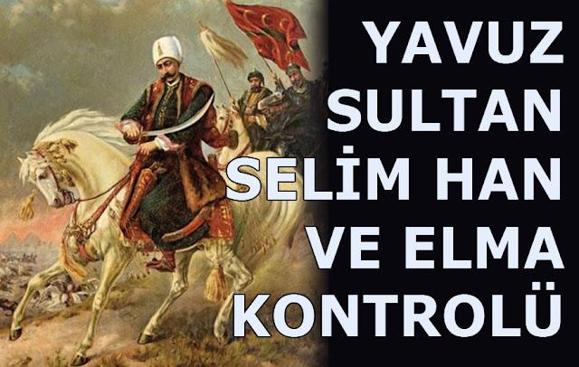 at, kılıç, osmanlı, osmanlı ordusu, yavuz sultan selim, han, padişah,