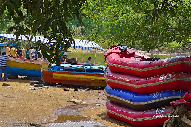 You can Enjoy River Raft in Dubare Elephant Camp, Coorg