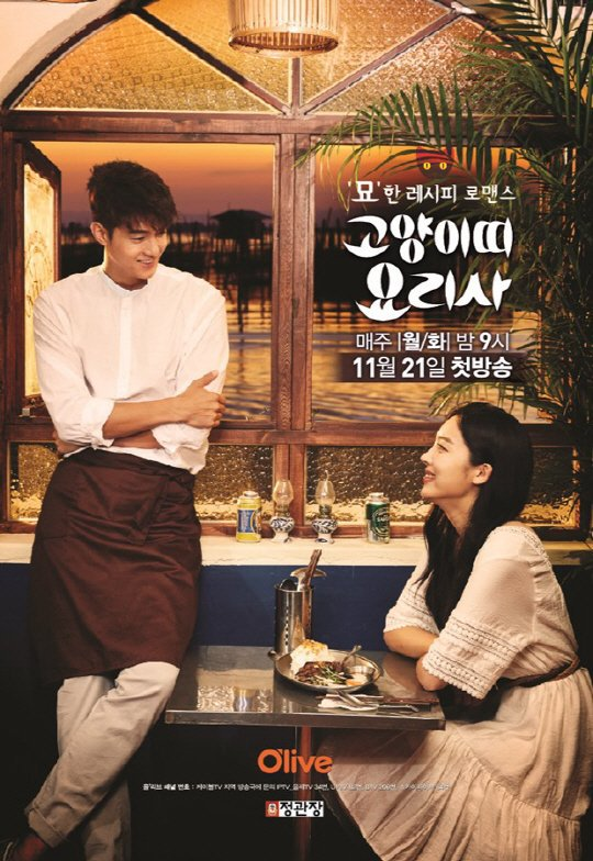 Cat Chef Korean Drama Wiki
