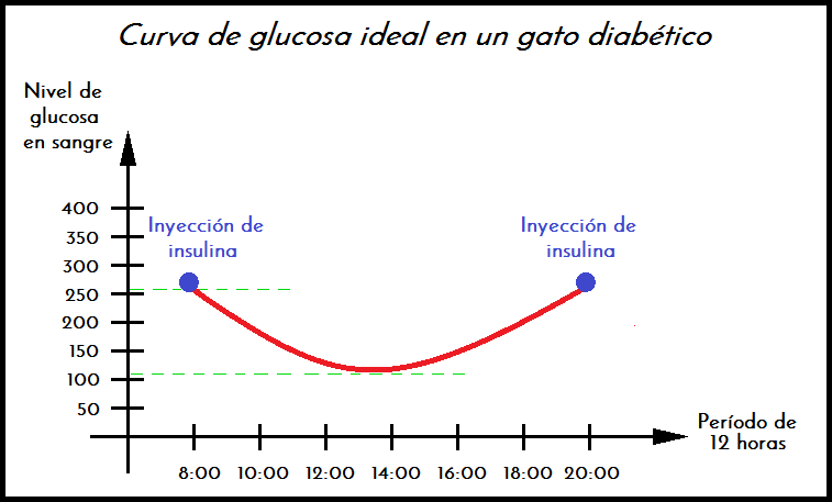 diabetes nivel de azúcar en la sangre 400