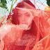 O boicote de Lorde pode dar um novo rumo para o Grammy de 'Disco do ano'