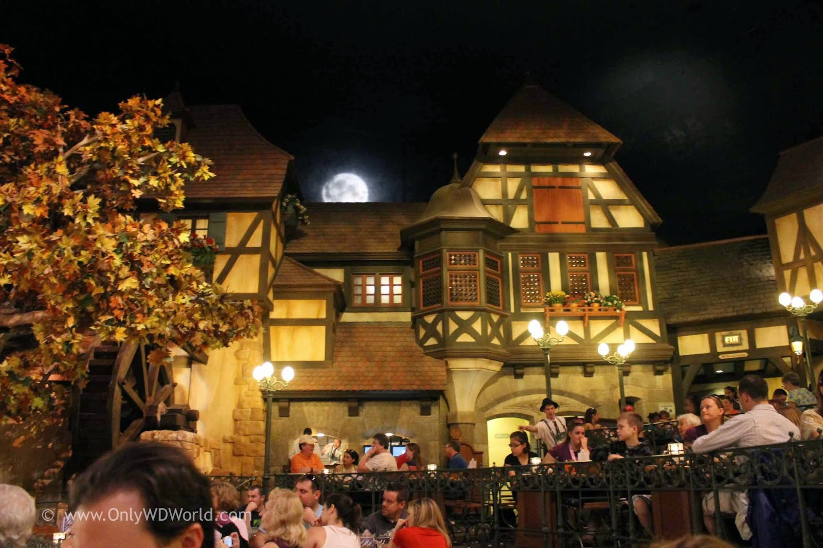 disney world park restaurants