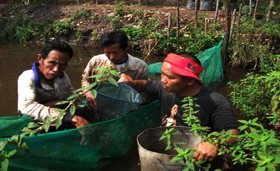 Pengertian Kearifan Budaya Lokal Sebagai Ciri Khas Setiap Daerah