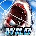 Tải Game Wild Fishing Simulator Hack Full Tiền Vàng Cho Android