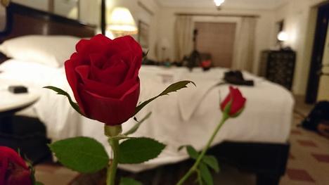 Foto Hasil Kamera Sony Xperia XZ