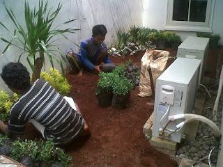 Jasa Tukang Taman Murah, Tukang Taman Profesional