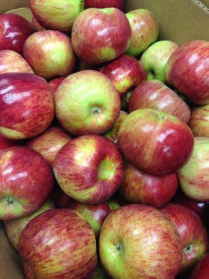 IMG 4884%255B1%255D - Homemade Applesauce