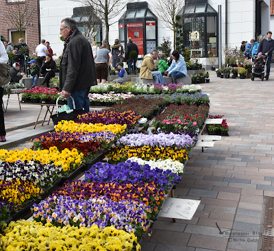 Blumenmarkt in Meldorf April 16