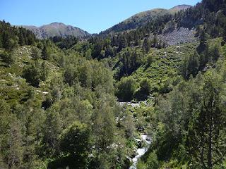 Río Cadí