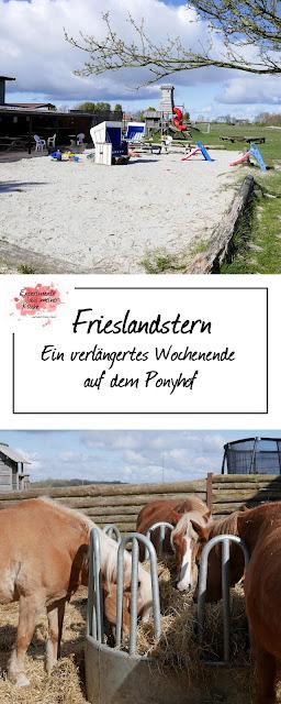 Ein verlängertes Wochenende am Meer | Frieslandstern | Nordsee | Reisen | Eamk on Tour