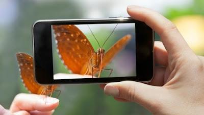 Tips Menggunakan Kamera Smartphone Hasil Terbaik