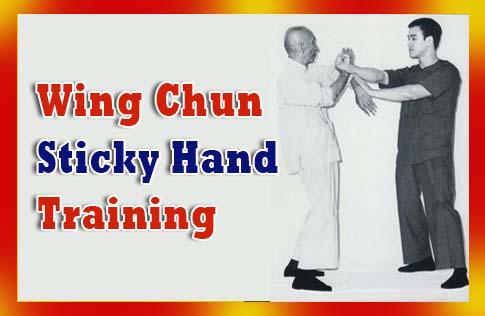 Wing Chun Sticky Hand Training