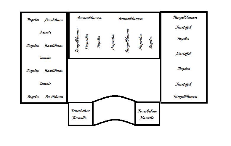 berliner landpomeranze ein berlin gartenblog alles rund ums hochbeet iii mischkultur und. Black Bedroom Furniture Sets. Home Design Ideas