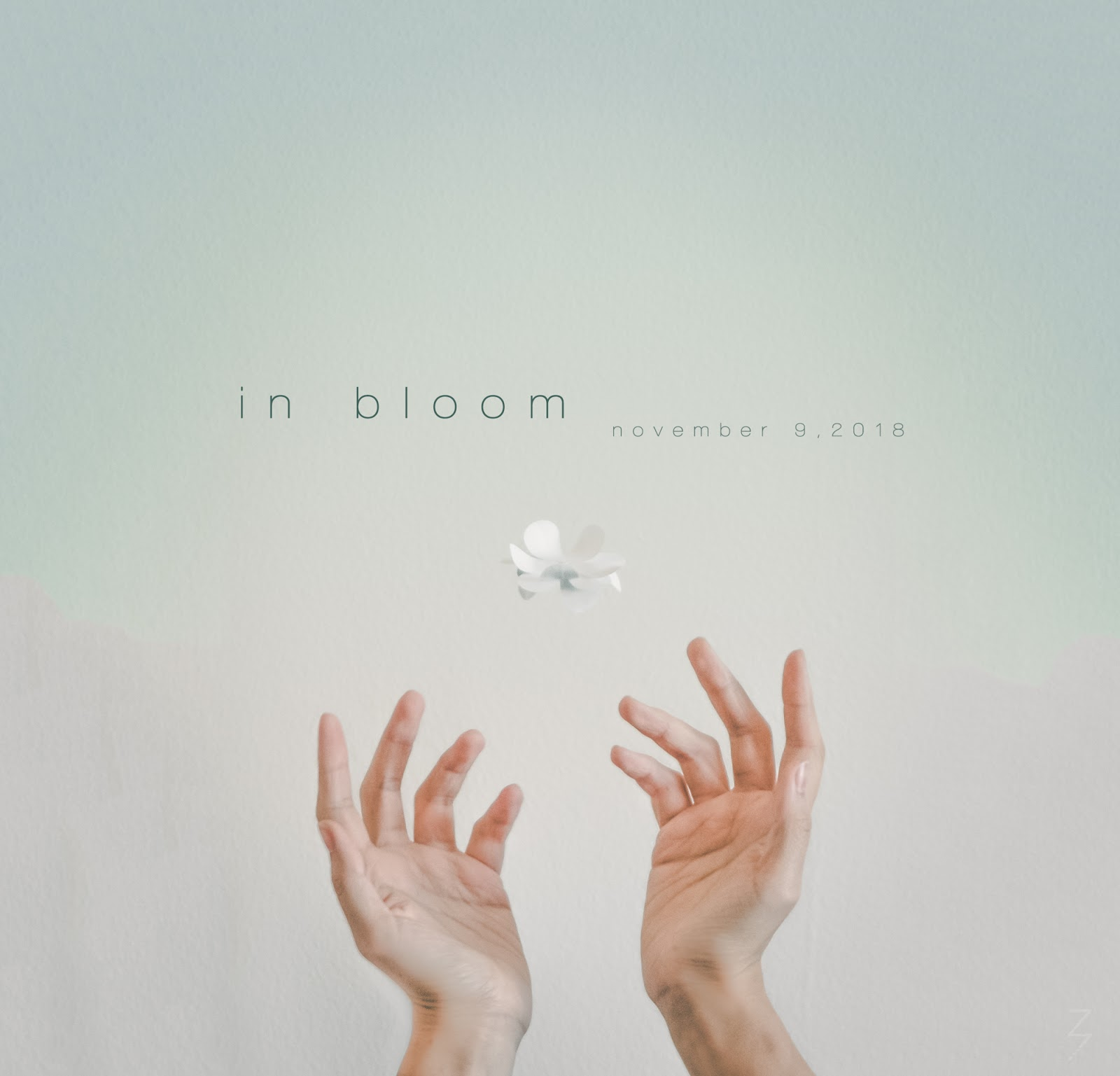 IN BLOOM - An Intimate Interactive Art Installation